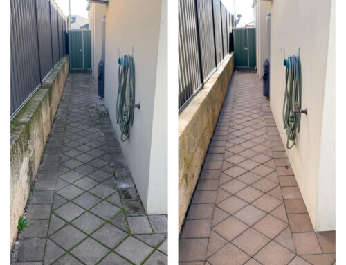 Paver Cleaning – Wembley